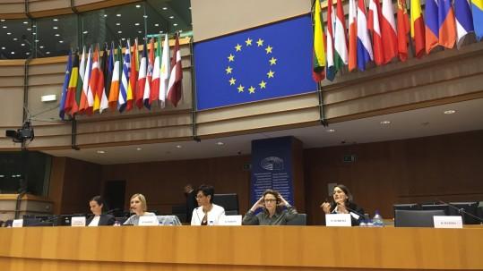 Beatriz Becerra en el pleno del PE