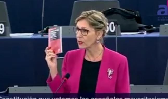 Beatriz Becerra Constitución española